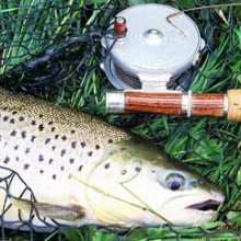 Introduction to Trout Fly Fishing
