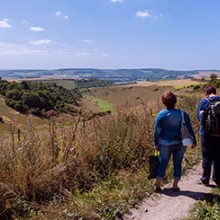 Full Day South Downs Walking Adventure with Pub Lunch